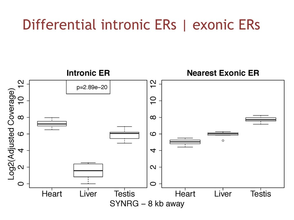 Differential intronic ERs   exonic ERs