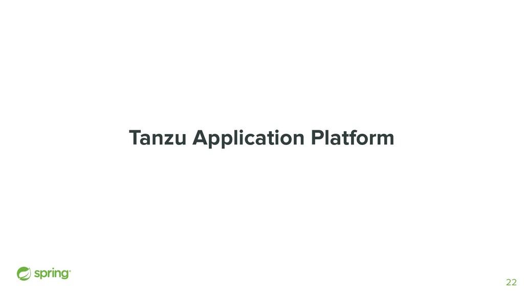 Tanzu Application Platform 22