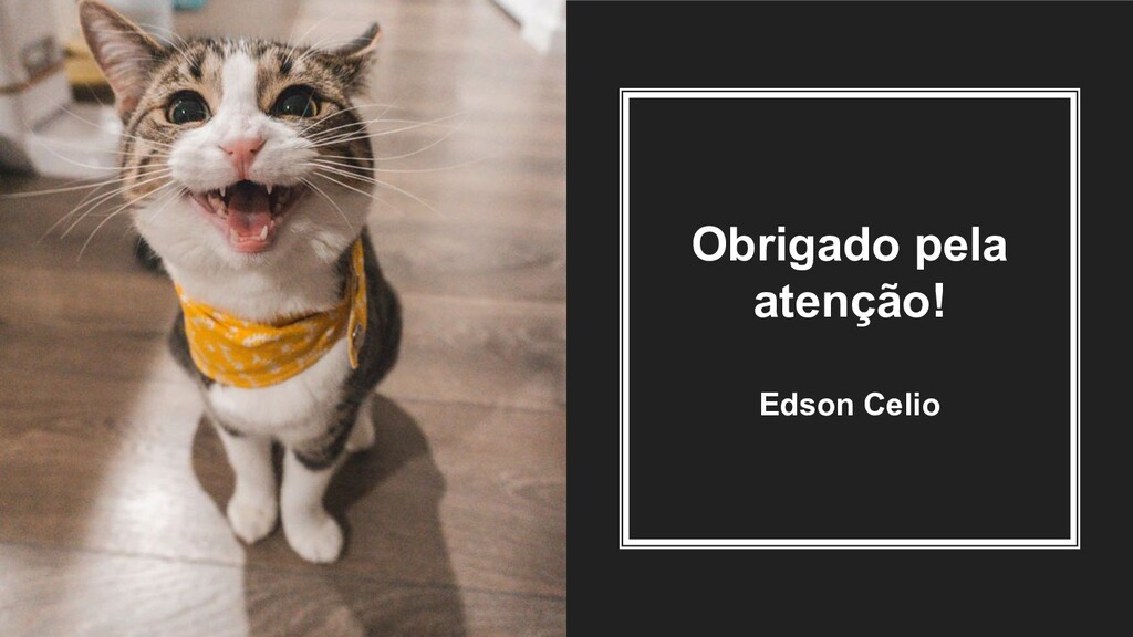 Obrigado pela atenção! Edson Celio
