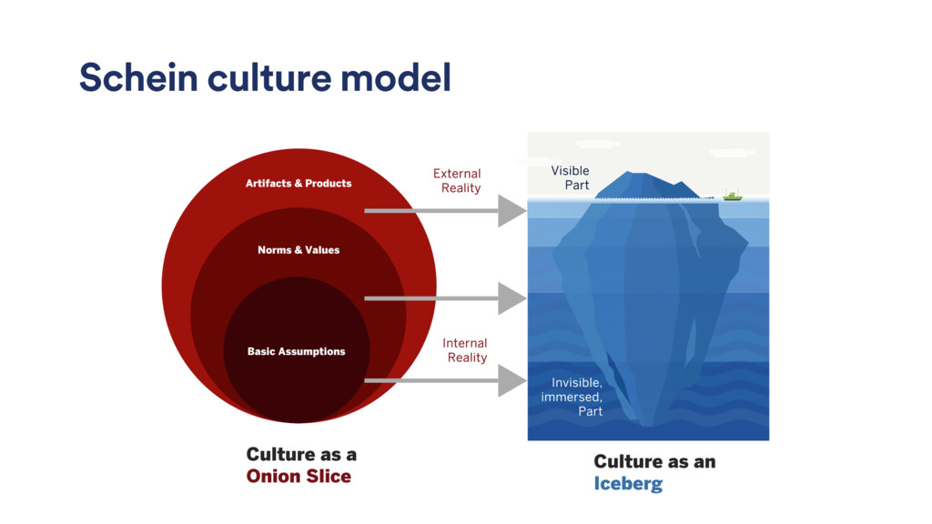 Schein culture model