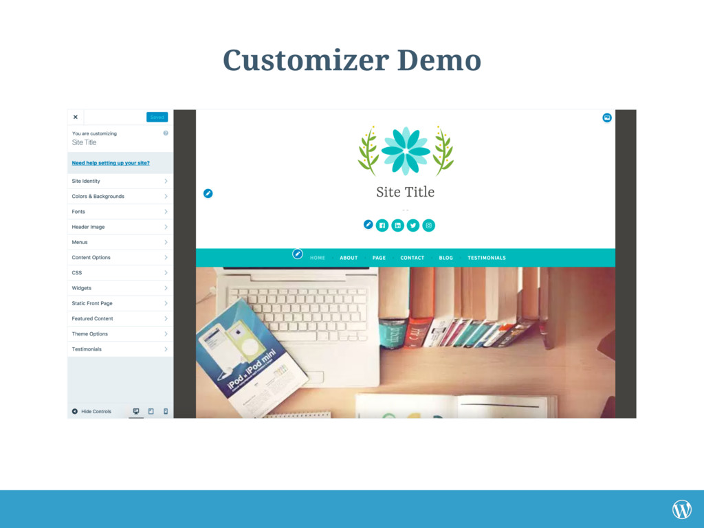 Customizer Demo