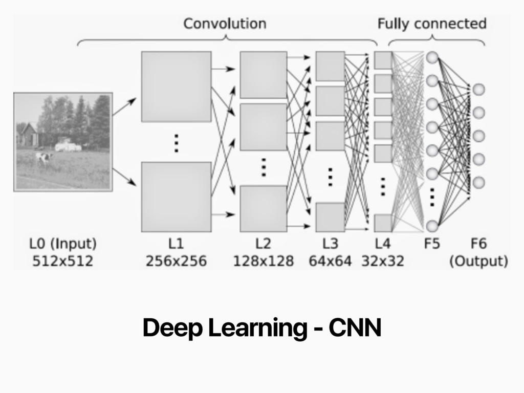 Deep Learning - CNN
