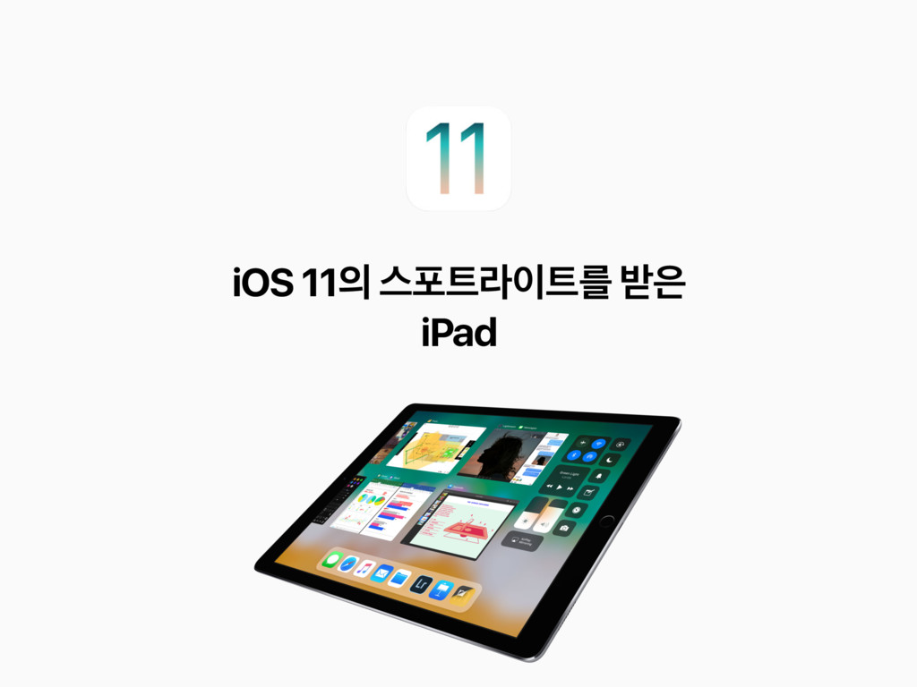 iOS 11 झನۄܳ ߉ iPad