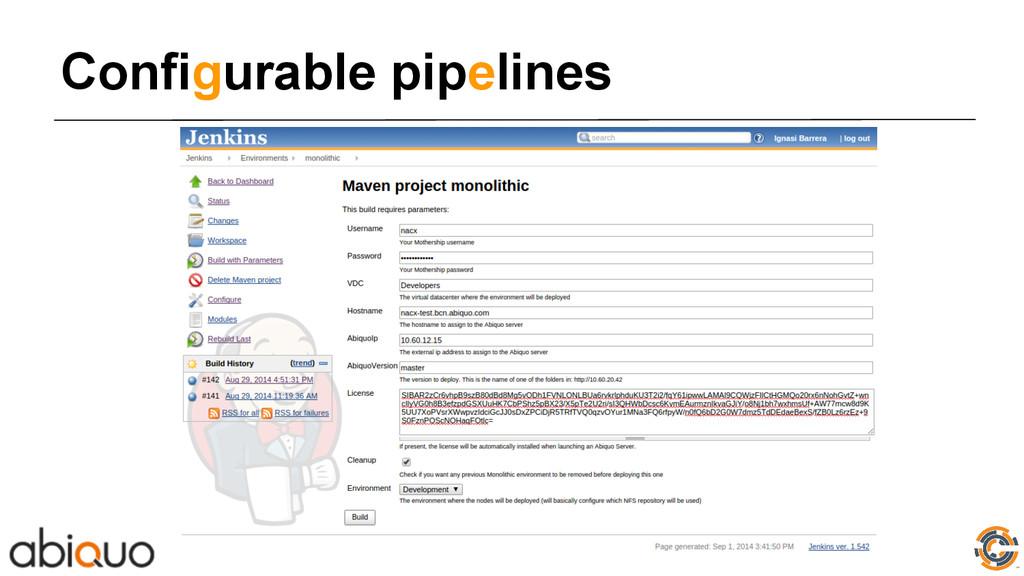 Configurable pipelines