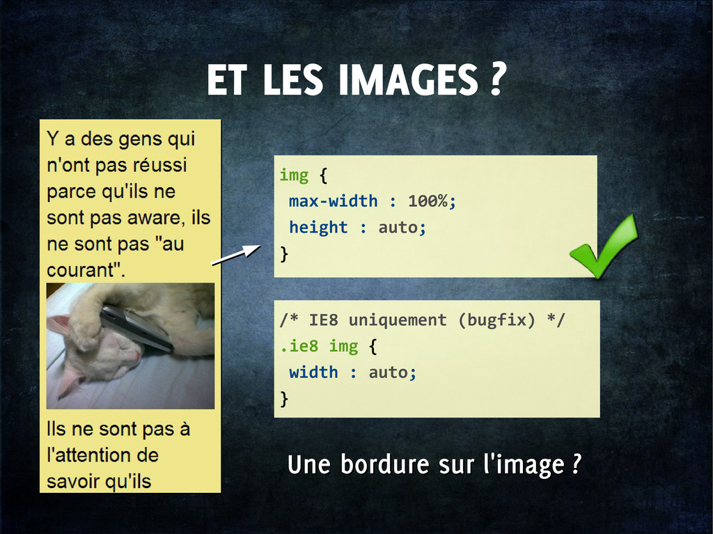 ET LES IMAGES ? img { max-width : 100%; height ...