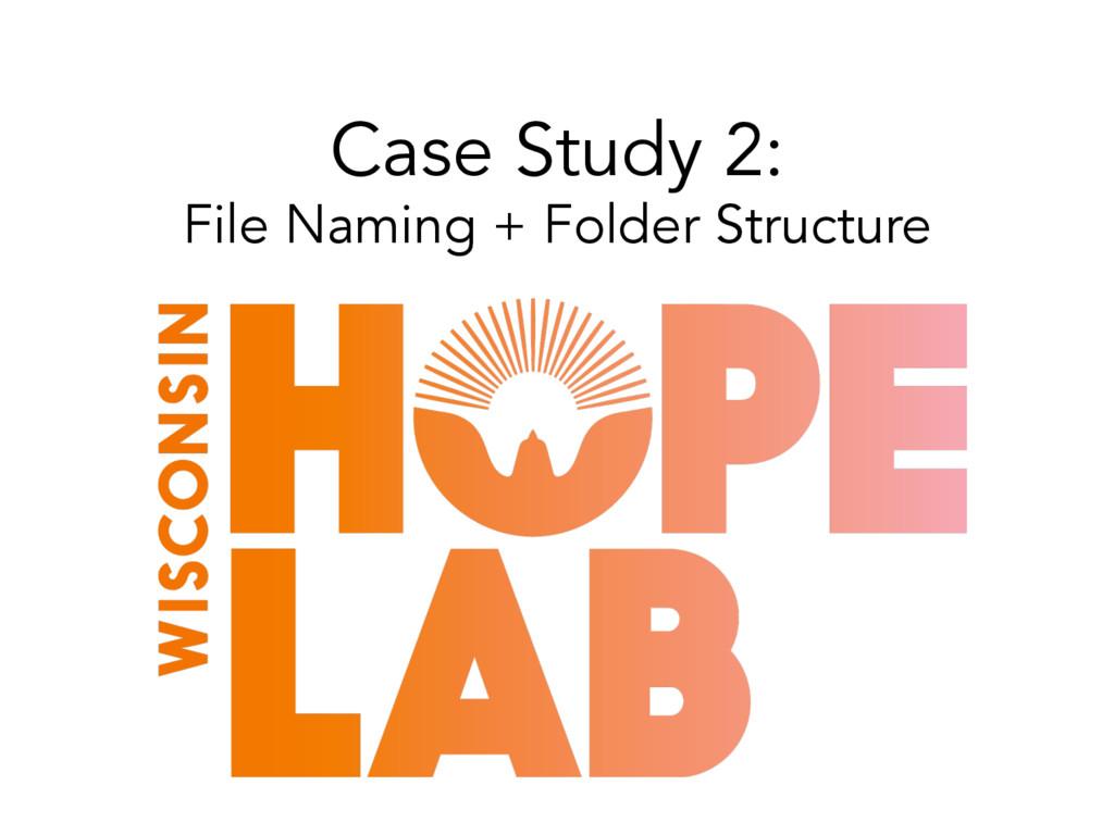 Case Study 2: File Naming + Folder Structure
