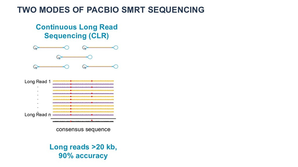 TWO MODES OF PACBIO SMRT SEQUENCING Continuous ...