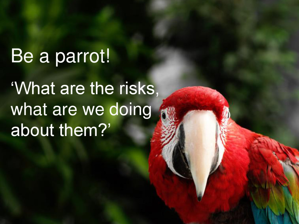 Be a parrot! 'What are the risks, what are we d...