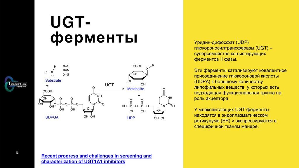 5 UGT- ферменты Уридин-дифосфат (UDP) глюкороно...