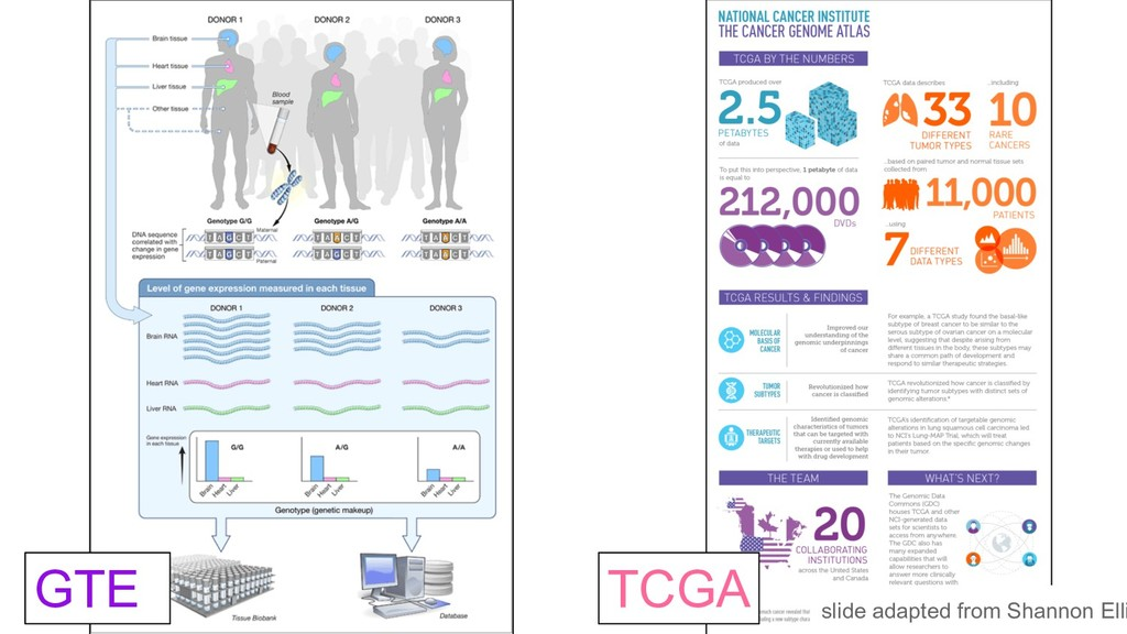 GTE TCGA slide adapted from Shannon Elli