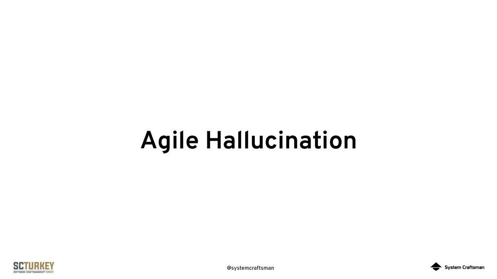 @systemcraftsman Agile Hallucination