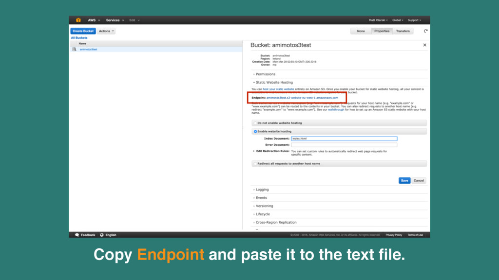 Copy Endpoint and paste it to the text file.