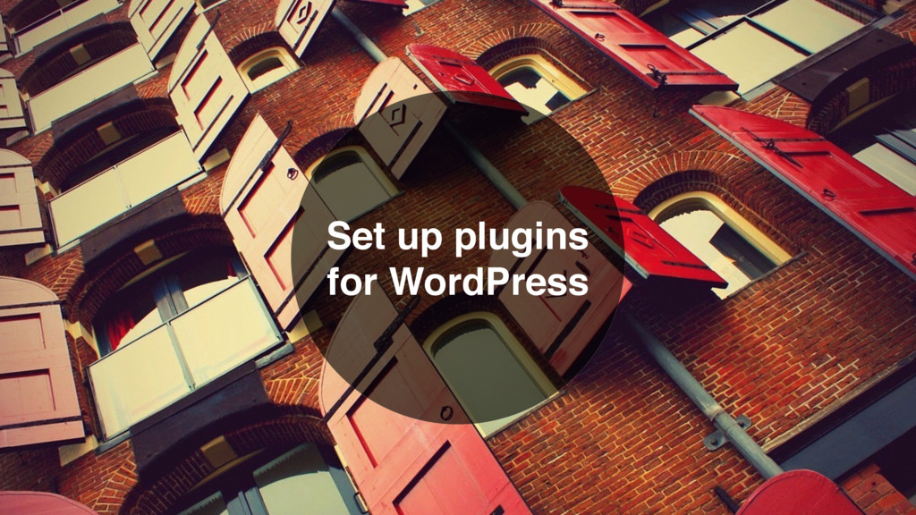 Set up plugins for WordPress