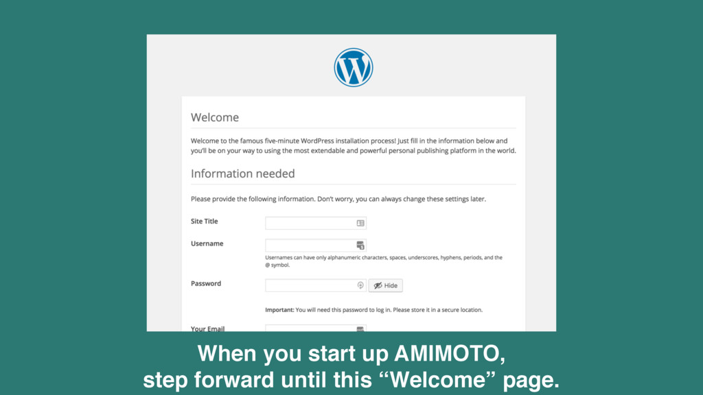 When you start up AMIMOTO, 