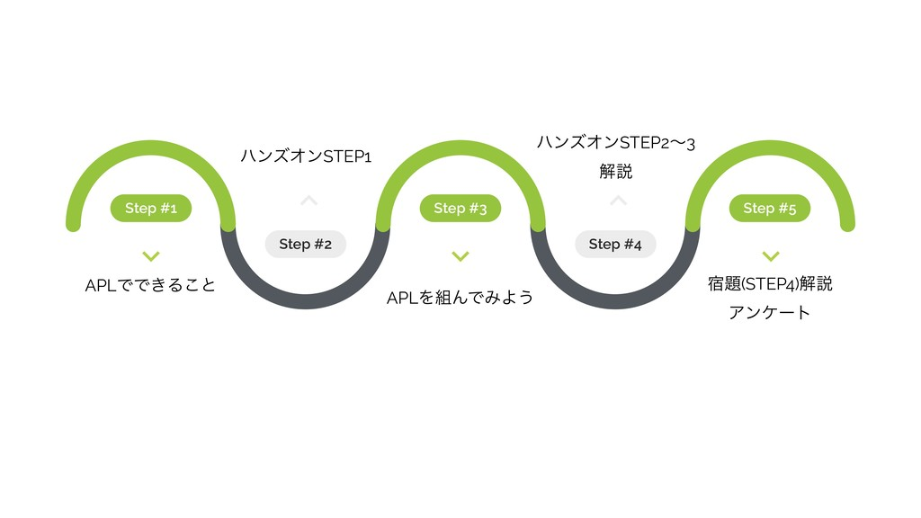 Step #1 Step #3 Step #5 Step #2 Step #4 APLͰͰ͖Δ...