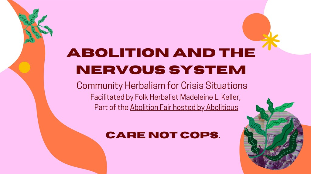 Abolition And the Nervous System Community Herb...