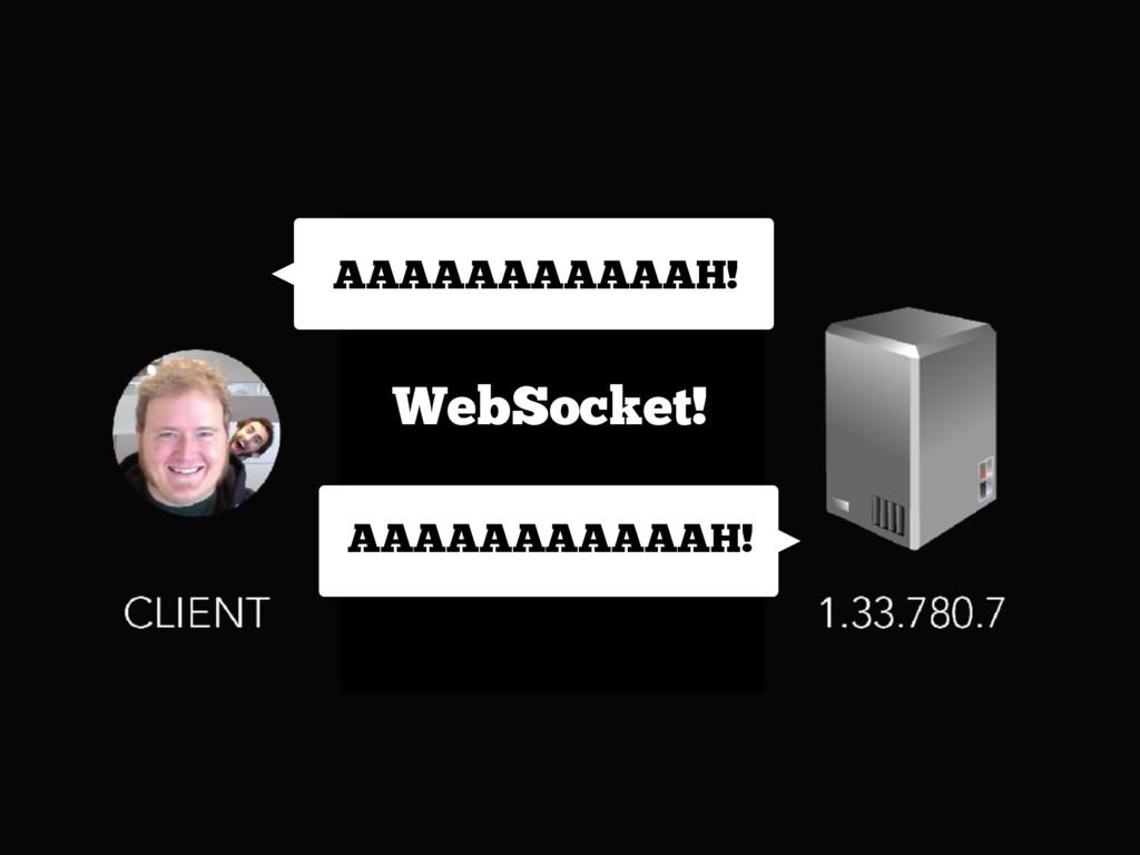 AAAAAAAAAAAH! AAAAAAAAAAAH! WebSocket!