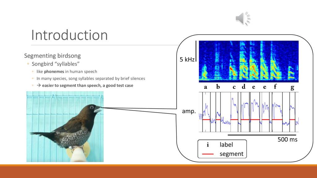"Introduction Segmenting birdsong ◦ Songbird ""sy..."