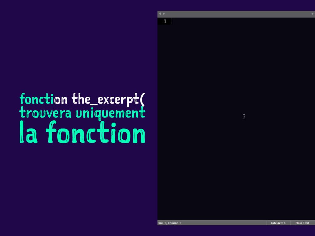 fonction the_excerpt( trouvera uniquement la fo...