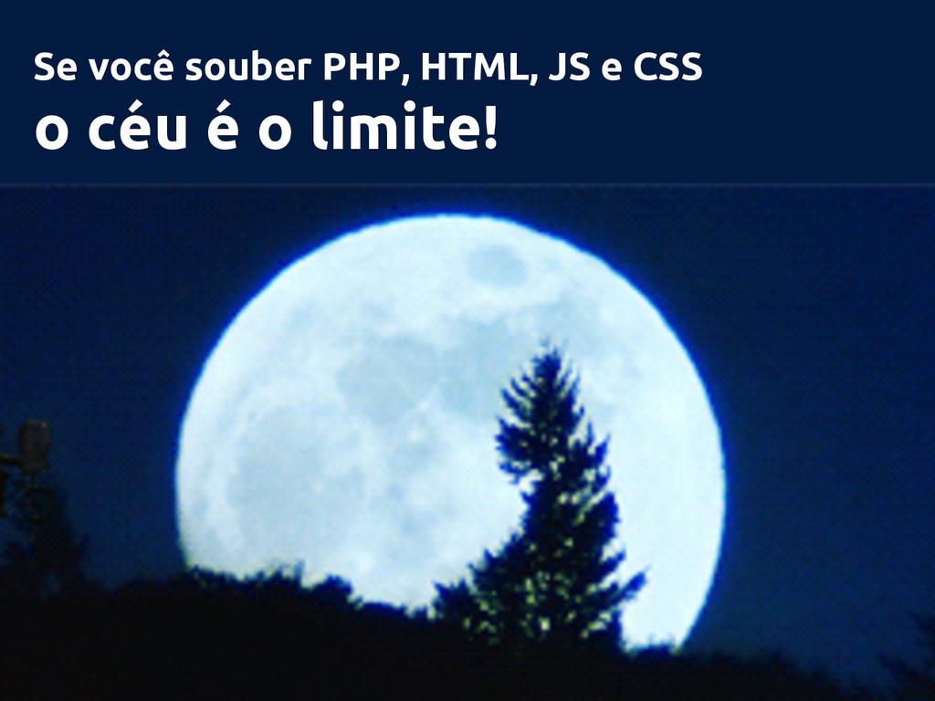 Se você souber PHP, HTML, JS e CSS o céu é o li...