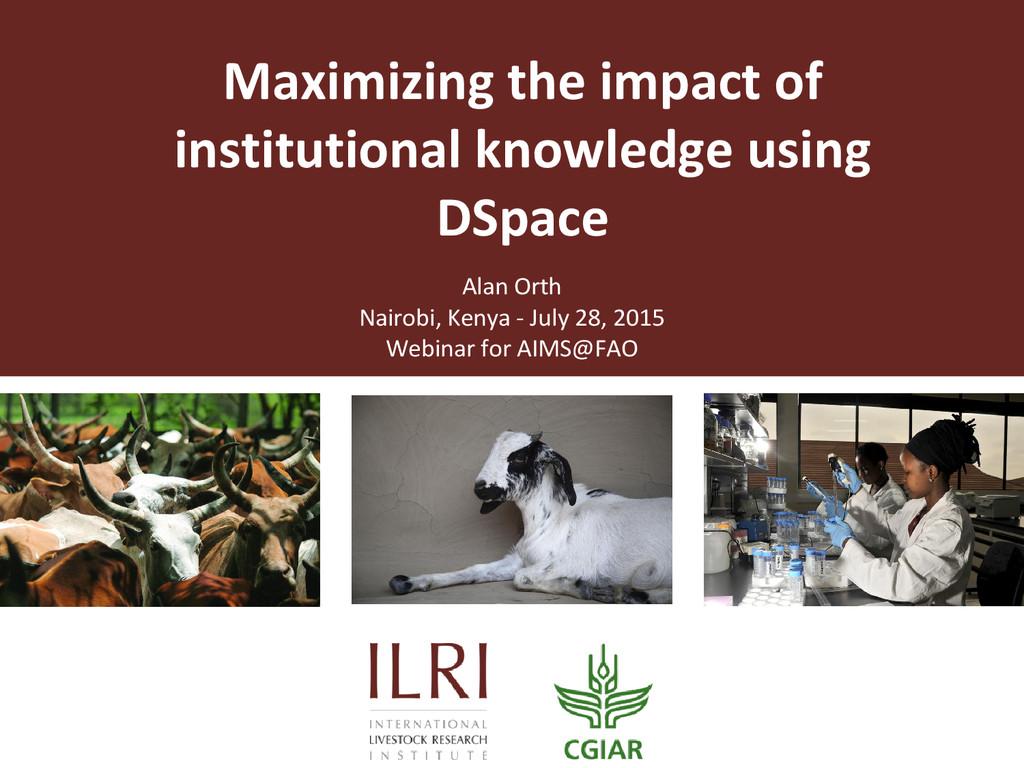 Maximizing the impact of institutional knowledg...