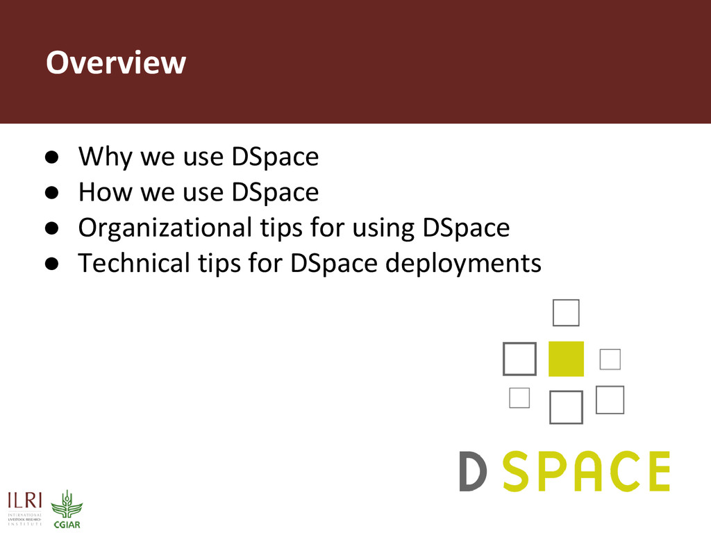 Overview ● Why we use DSpace ● How we use DSpac...