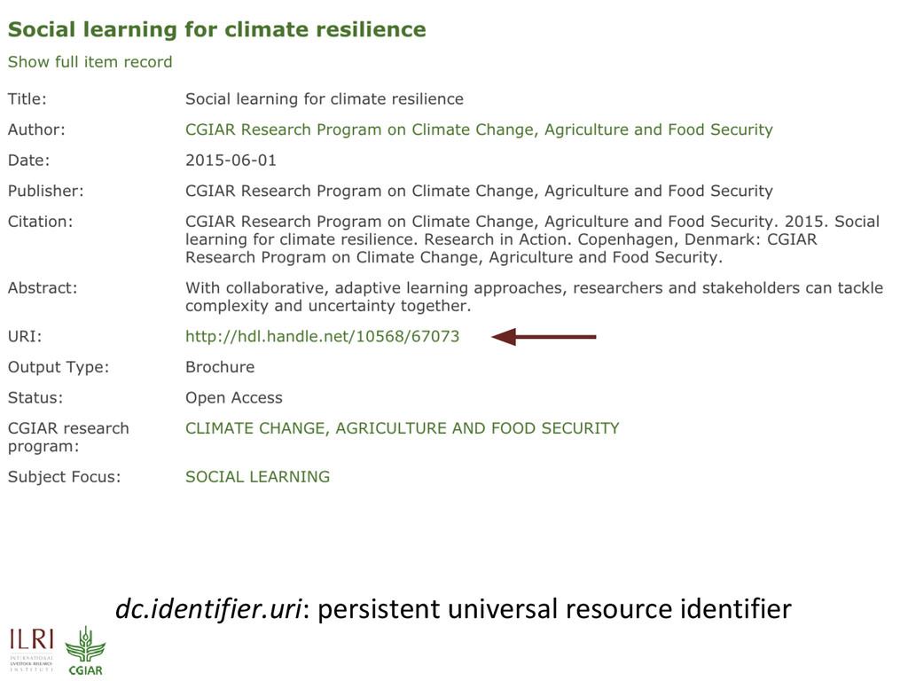 dc.identifier.uri: persistent universal resourc...