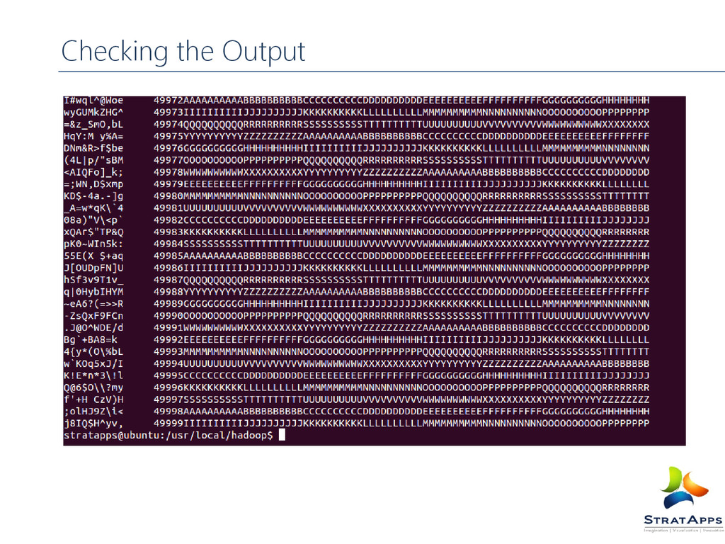 Checking the Output