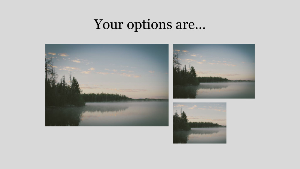 Your options are…