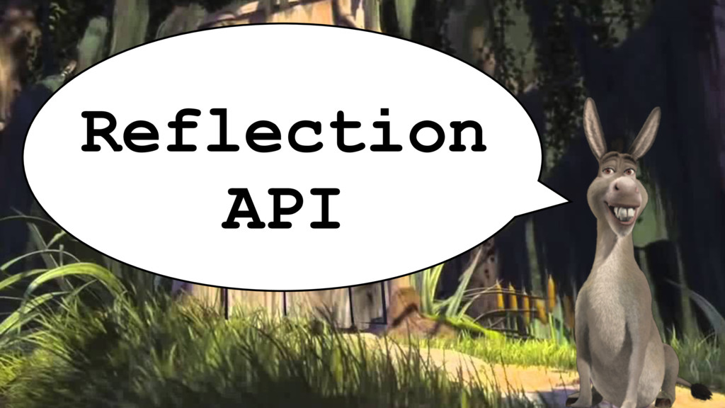 Reflection API