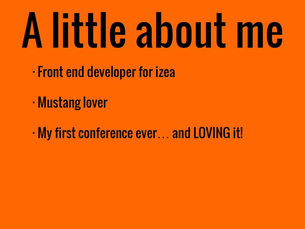 · Front end developer for izea · Mustang lover ...