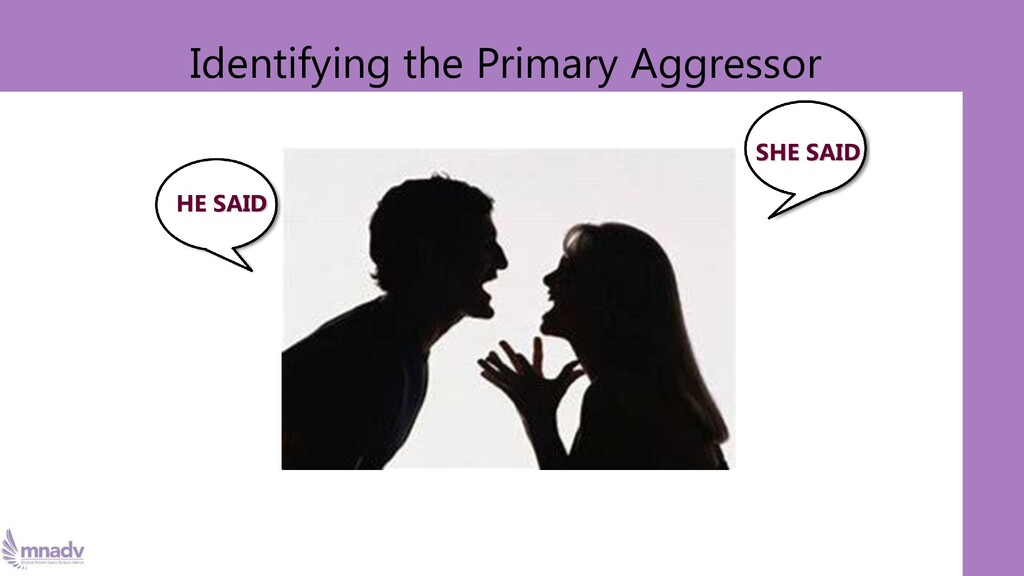 Identifying the Primary Aggressor SHE SAID HE S...
