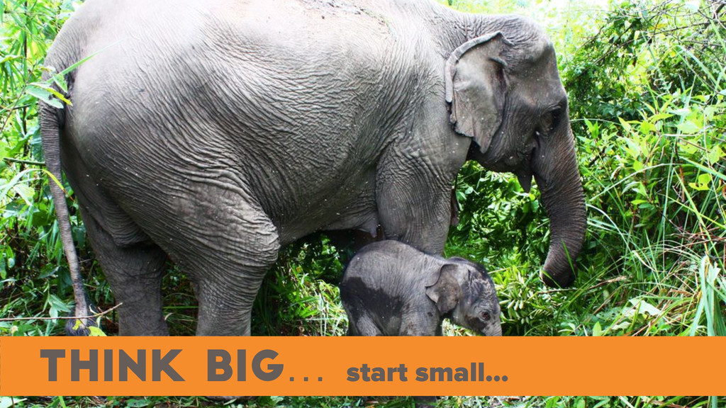 think big… start small… .