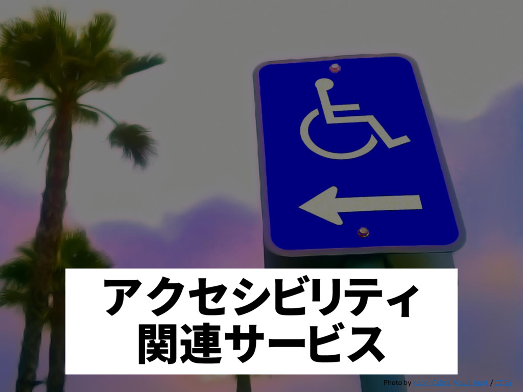 アクセシビリティ 関連サービス Photo by Keoni Cabral Visual hu...
