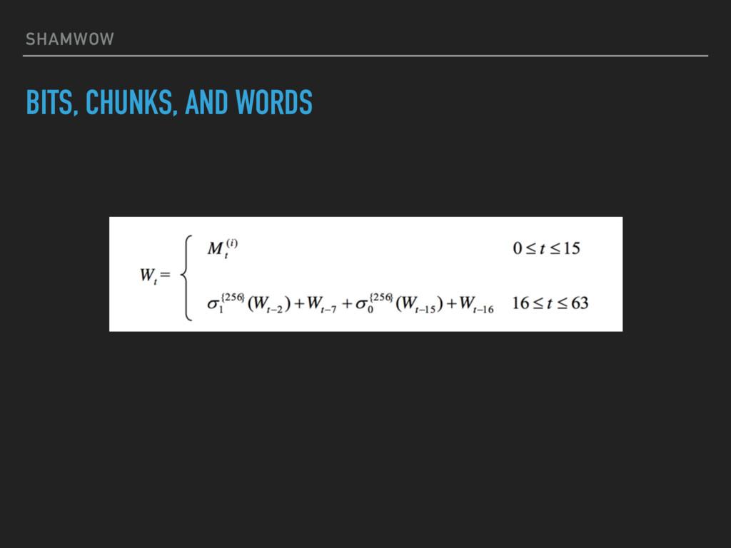 SHAMWOW BITS, CHUNKS, AND WORDS