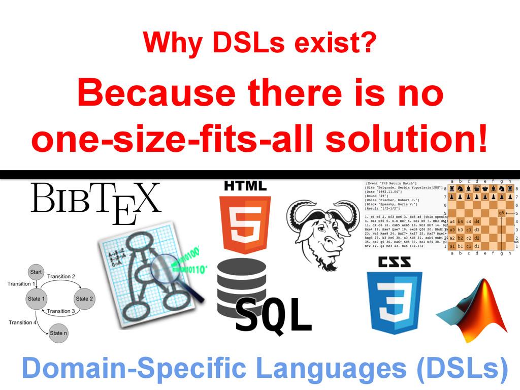 Domain-Specific Languages (DSLs) Why DSLs exist...