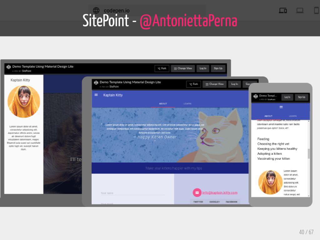 SitePoint - @AntoniettaPerna 40 / 67