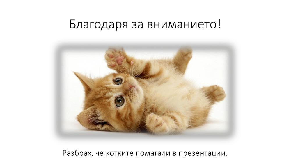 Благодаря за вниманието! Разбрах, че котките по...