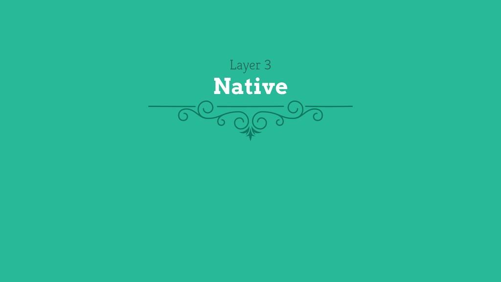 Layer 3 Native