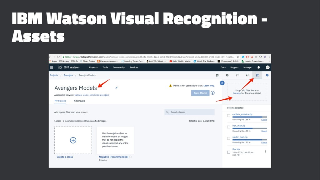 IBM Watson Visual Recognition - Assets