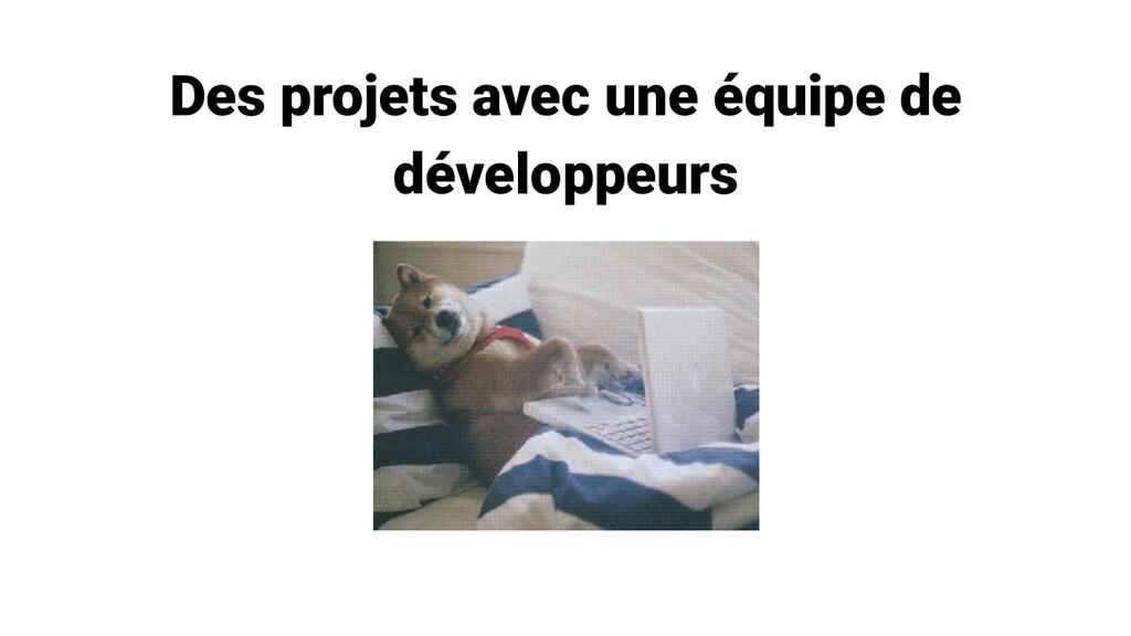 Des projets avec une équipe de développeurs
