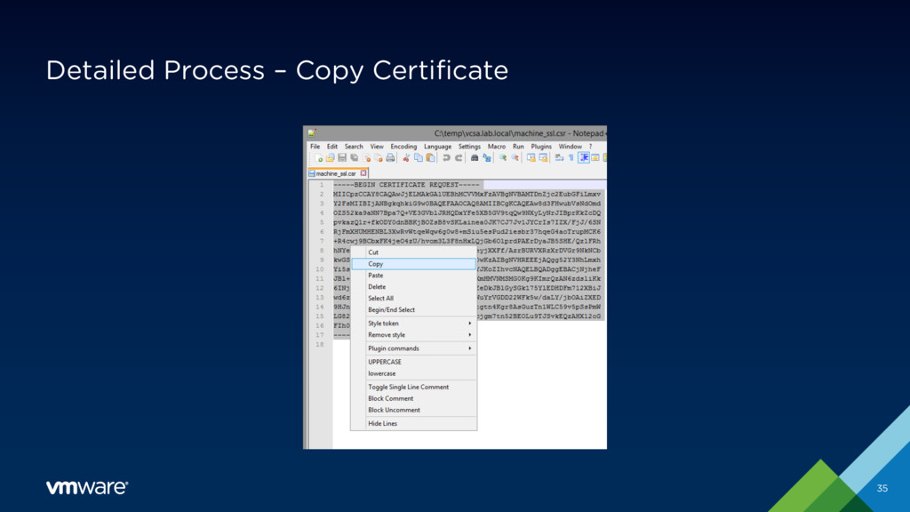 Detailed Process – Copy Certificate 35