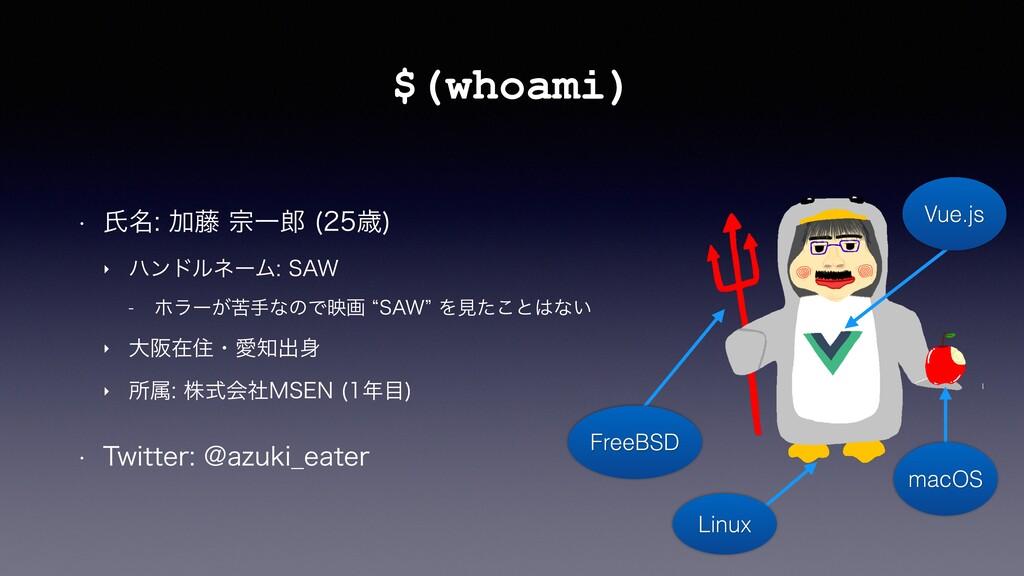 "$(whoami) w ࢯ໊Ճ౻फҰ ࡀ  ‣ ϋϯυϧωʔϜ4""8 ..."