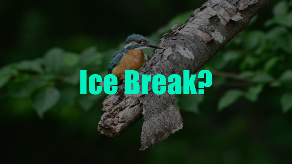 Ice Break?