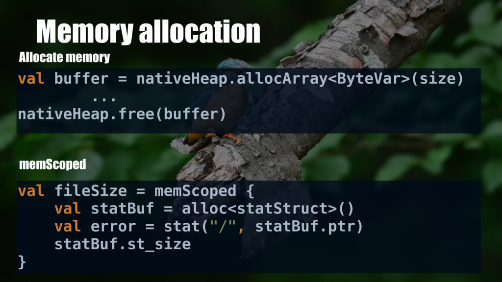 Memory allocation Allocate memory val buffer = ...