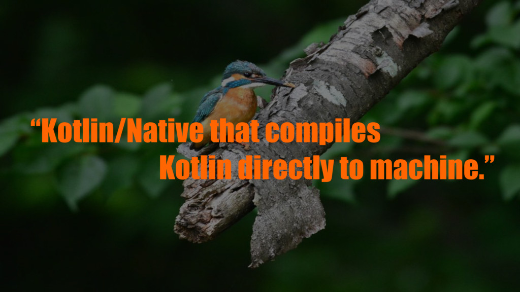 """Kotlin/Native that compiles Kotlin directly to..."