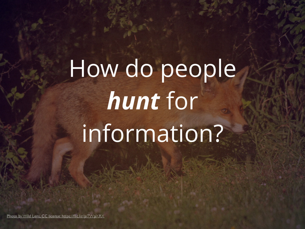 How do people hunt for information? Photo by Wi...