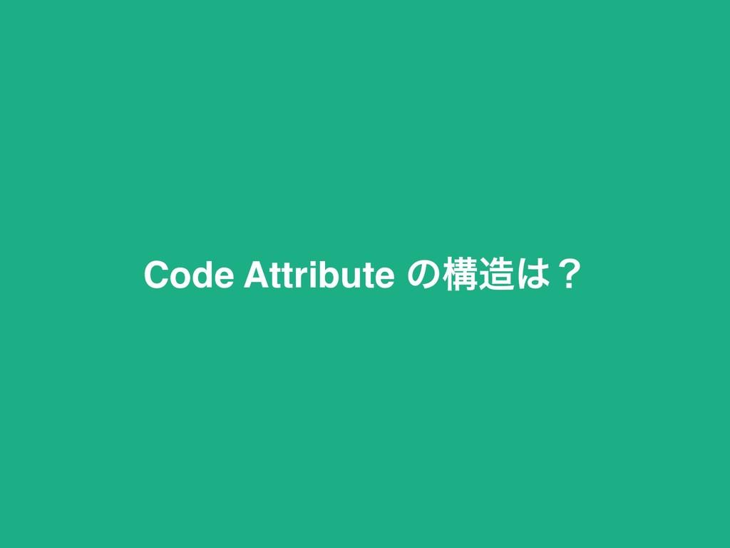 Code Attribute ͷߏʁ