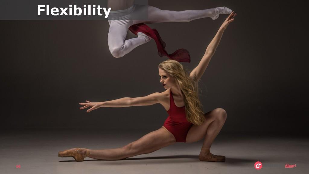 16 Flexibility