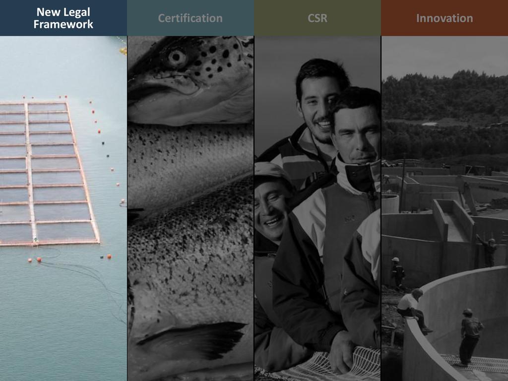Certification CSR Innovation New Legal Framework